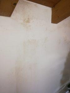 Immagine di muffa su parete perimetrale stanza mansardata