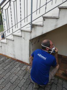 Foto specialista risoluzione problemi di muffa e umidità in azione
