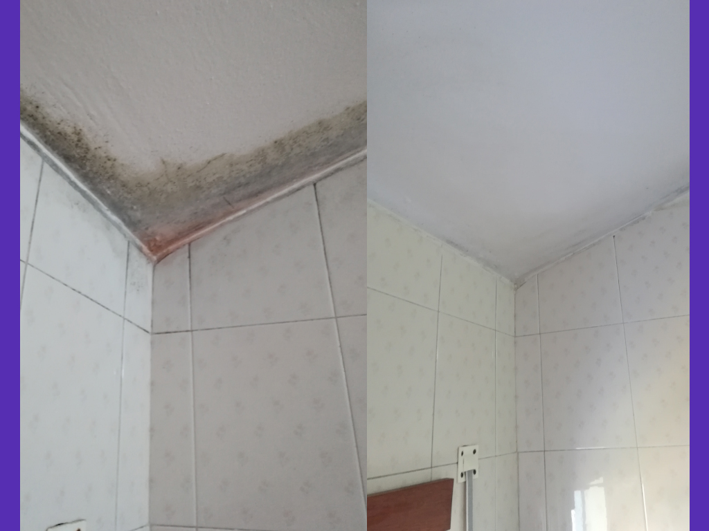 muffa-angolo-soffitto-mansarda-piano-mansardato